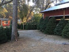 Anderson Christmas Tree Farm (CLOSED FOR 2019 SEASON)